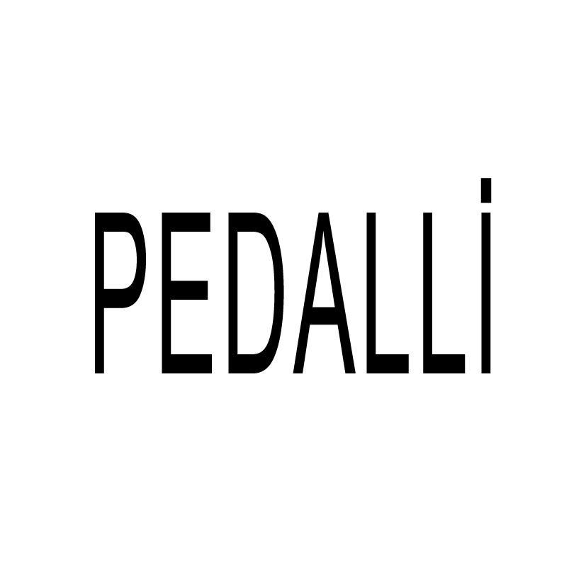Pedalli E-bike elektrikli bisiklet